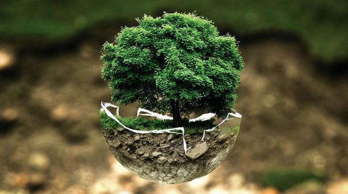 Declaracions ambientals 2017